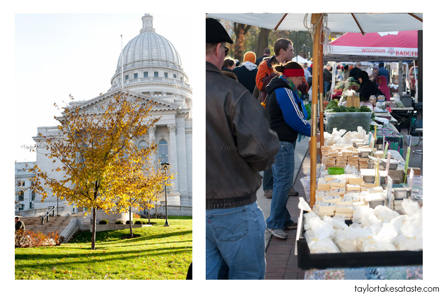 Cheese and Fall in Madison, WI
